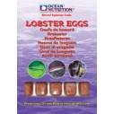 Huevos de Langosta 100gr