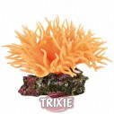 Trixie Anemona marina, 8 cm