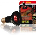 Exo Terra Heat Glo Infra-Rojo Nocturno 75W PT2142