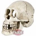Trixie Cráneo, 15 cm